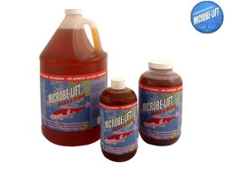 Microbe Lift Clean & Clear bacterie 1 L